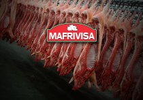 home-web-mafrivisa-castuera-matadero-badajoz-extremadura-frigorifico-porcino-certificacion